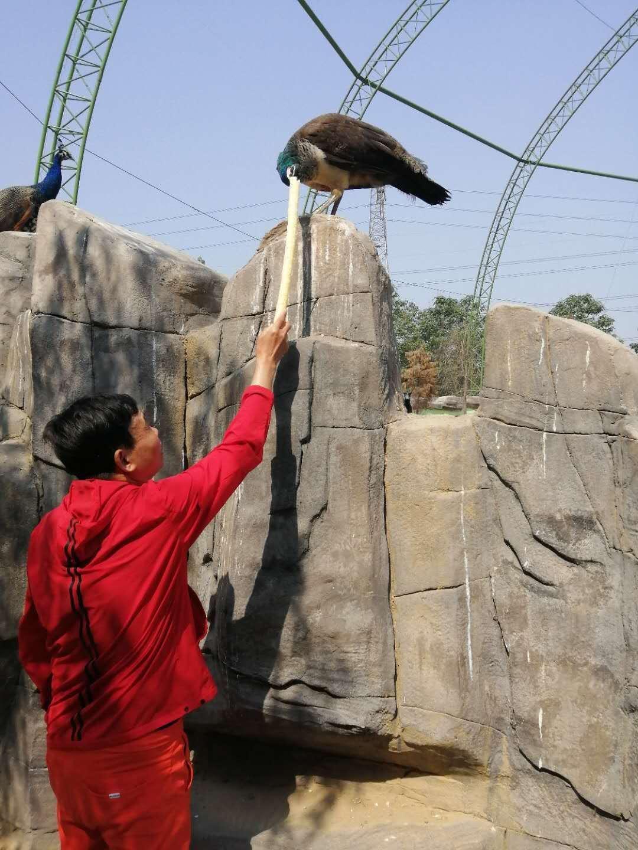 中国好人汪太银动物家园献爱心