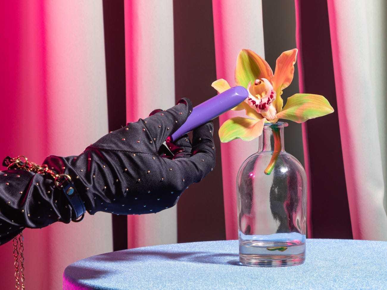 """卫报:隔离期间怎么消除寂寞?荷兰政府建议单身人士找""""固定伴侣"""""""