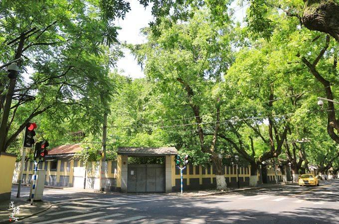 南京有一条文艺街道,是我国首批历史文化街区,还是网红打卡地