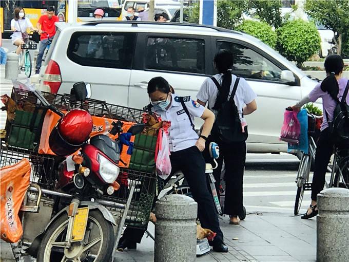 流动鸡贩在佛山三水二广高速入口卖鸡,过往车辆心惊鸡毛撒一地