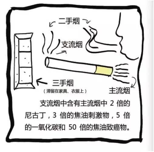 原创什么时候戒烟才对身体最好?医生给你一个明确数字