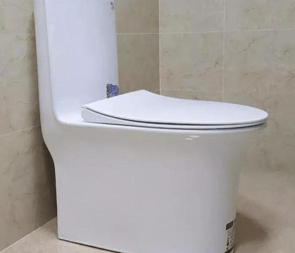 原创装修施工问题解析:卫生间里装马桶和贴瓷砖,哪个先做会更好?图片