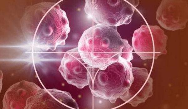 """我们都怕癌,但癌细胞最怕""""它们"""",每天吃一点,癌症不来扰"""