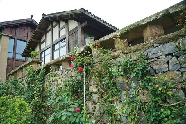 原创             重庆衰落乡村变热门旅游地,《亲爱的客栈》在这建民宿,景美如画