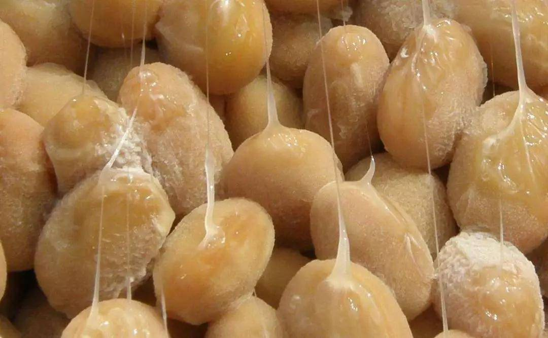 常吃发酵豆制品,有助于长寿? 减脂食谱 第3张