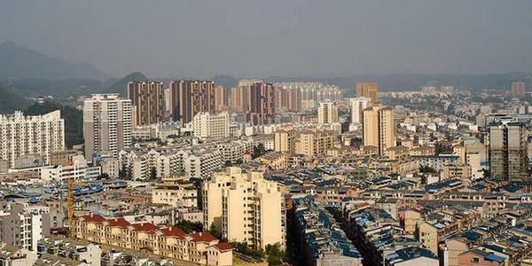 广西经济总量最大的县_广西最大眼镜蛇