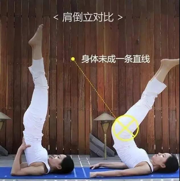 为什么练瑜伽那么久没效果?抓住要点,避免错误体式才能事半功倍_身体 知识百科 第11张