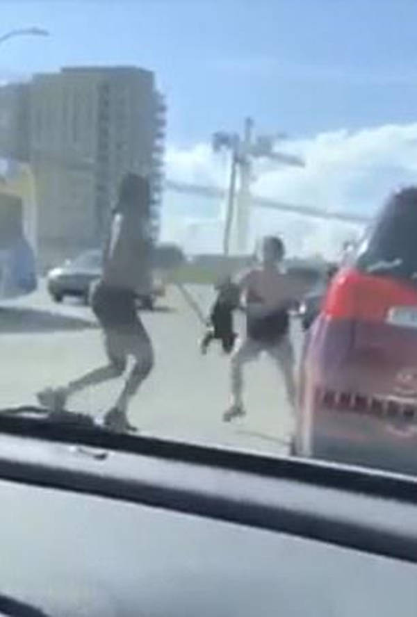 原创 加拿大两女子当街打架,牵连到狗狗,其中一人或涉嫌荼毒动物