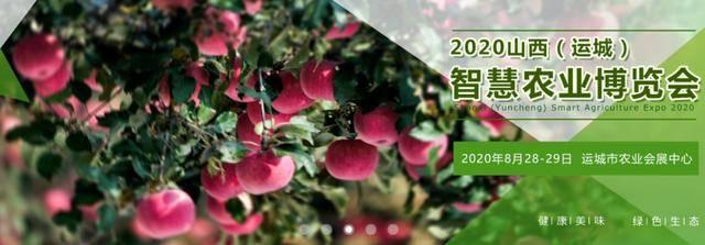 2020年下半年场花卉苗木园艺展,你安排了哪几场