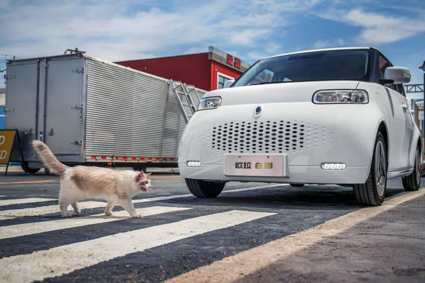 原来大狗,白猫,野马,美洲虎熊猫,看看那些以动物命名的车