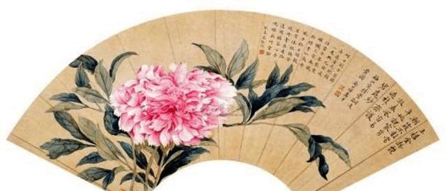 中国牡丹哪里最正宗?牡丹之都都是哪个城市插图(3)