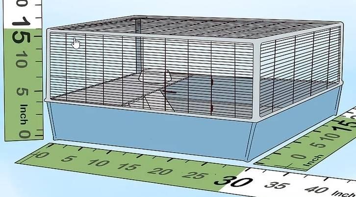 """你给仓鼠住的笼子真的是""""别墅""""吗?最全面的仓鼠笼选购攻略 (图5)"""