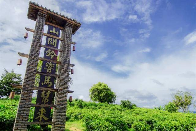 西双版纳有座小县城,盛产茶叶,堪称民族文化的大观园