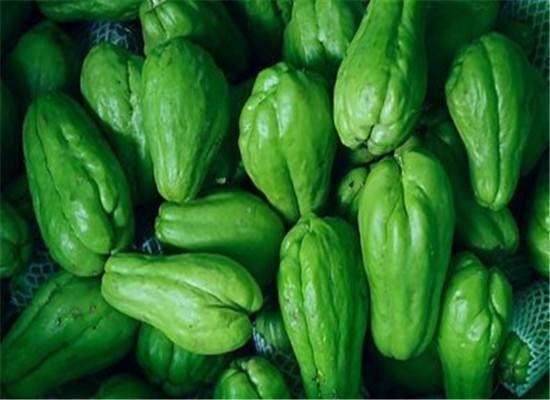 想要脑子聪明,多吃此瓜,能促进智力发育,让皮肤红润细嫩光滑
