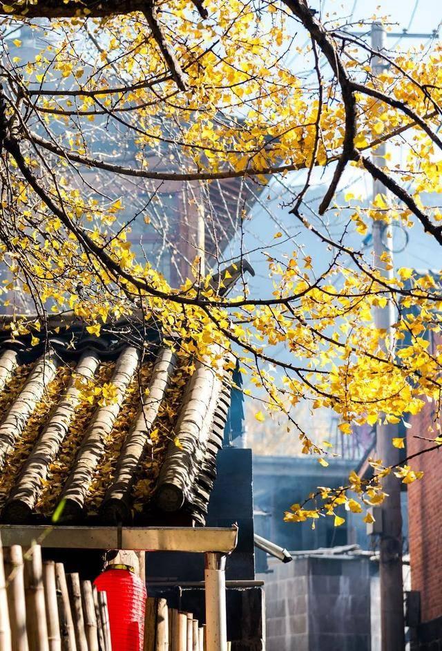 30个中国最美的地方,看到第三个,就忍不住想要出发了