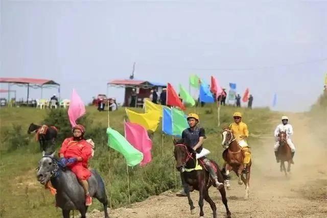 凡泰马术围栏:2020年甘肃临夏州第四届赛马邀请赛成功举办