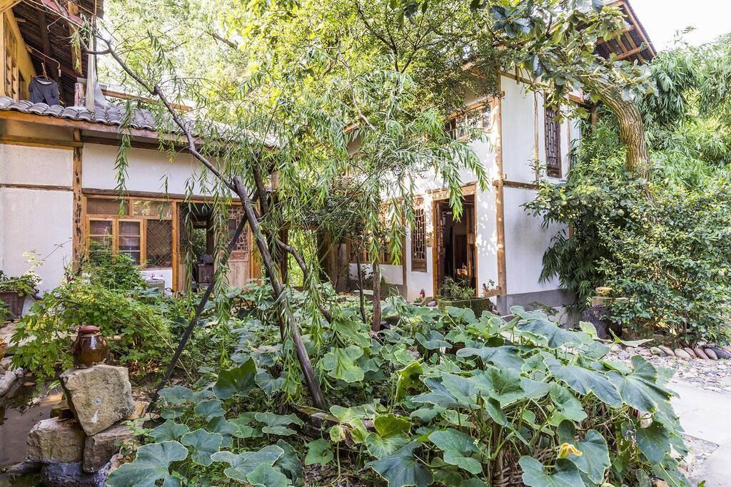 原创             在重庆你会住黄泥灌木打造的土房民宿吗?感受闲云野鹤的生活