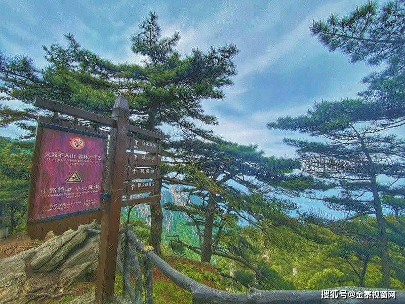 华东最后一片原始森林安徽天堂寨,江浙沪自驾推荐地……