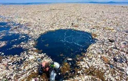 对于这片海洋垃圾场你有什么想说的吗