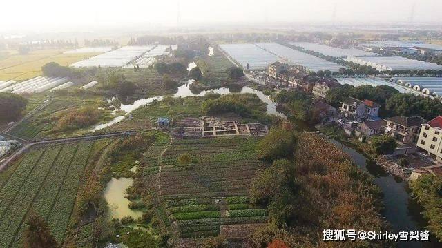 """""""中国土建金字塔""""在上海?已挖掘40多年,7000年历史被称为上海历史之源"""