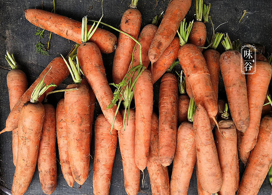 买胡萝卜,选干净的还是带泥的?老菜农:区别很大,下次不乱买了
