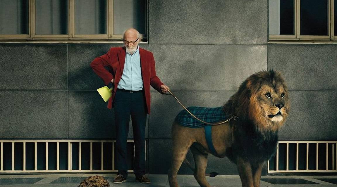 【走在城长的旅途】:搞笑GIF:小马:你特么的再想骑我,我可要叫家长了