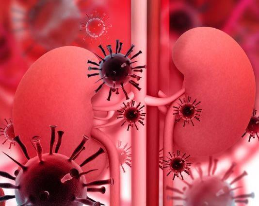 得了糖尿病,肾衰竭还会远吗?糖尿病肾病我们应该怎么去预防?