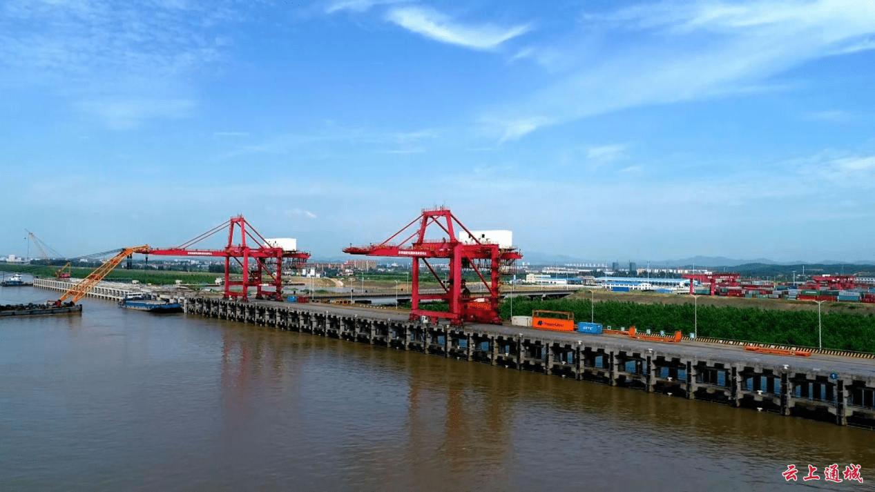 百花齐放耀隽水 ——三进进博会带来的通城变化-天津热点网