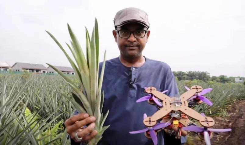 原创             陈根:无人机开发与制造,和一根菠萝叶有什么关系?