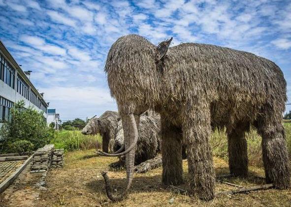 铜陵自然村落,美丽乡村建设成梦里水乡,都是古建筑历史却不远