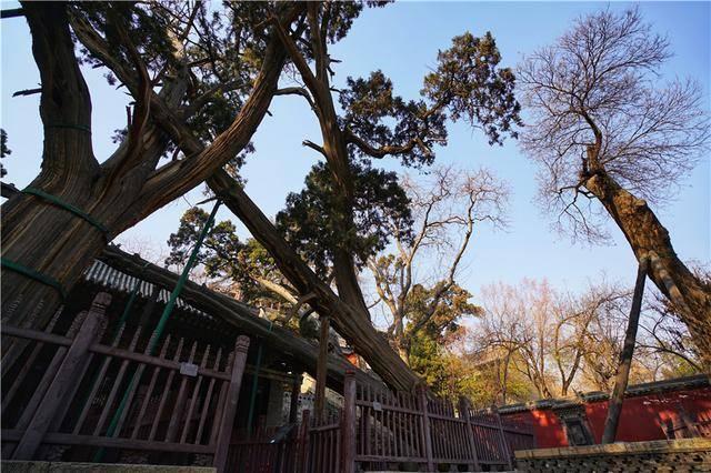 中国最早的皇家园林在太原,山西的简称也因为这里而得名  第12张