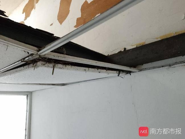 女子十多年前买广州一商铺,如今被漏水问题烦到哭,维权艰难