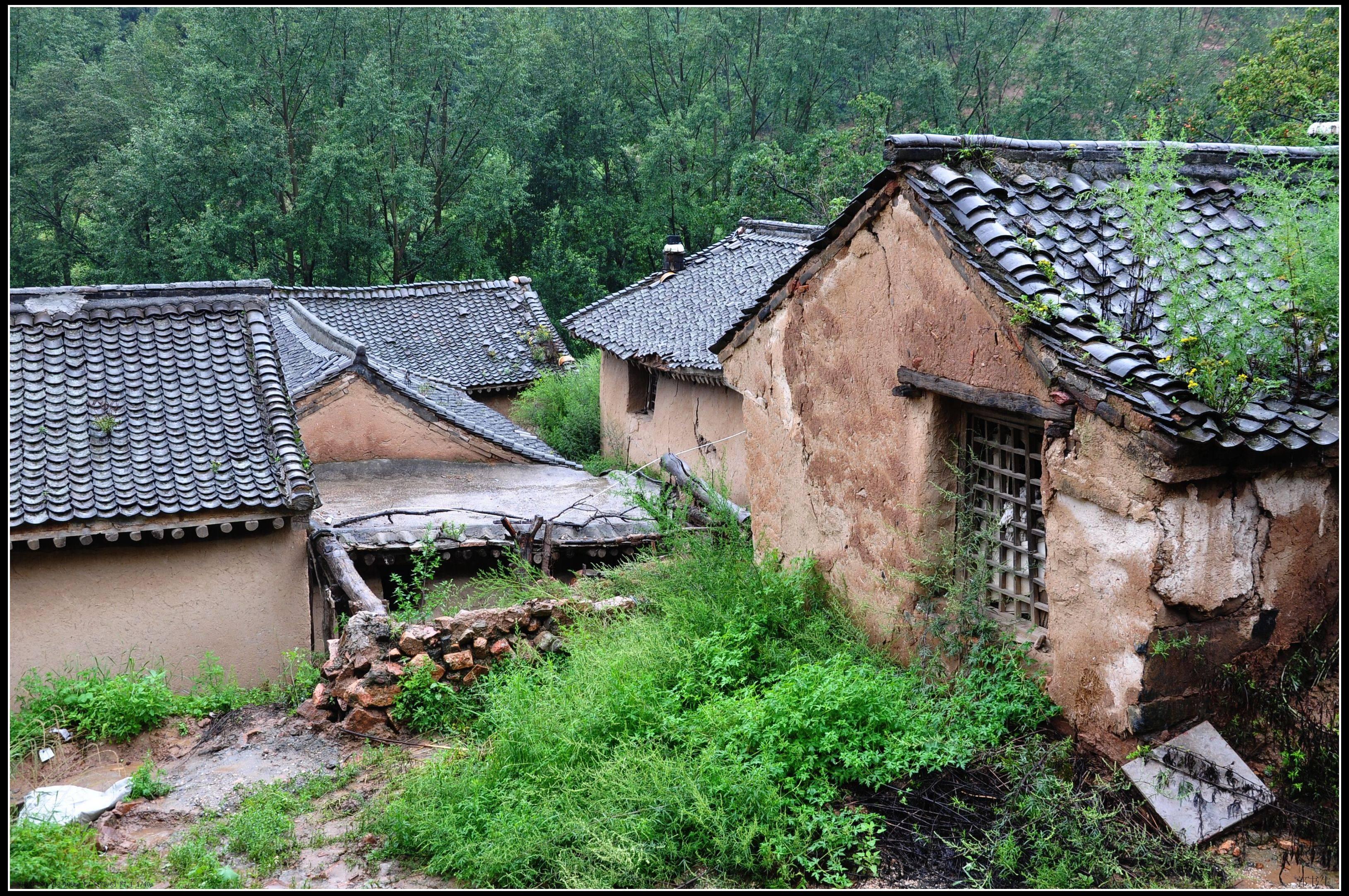 驼梁黄土台,暴雨洗礼中的小山村《百村写真》  第5张