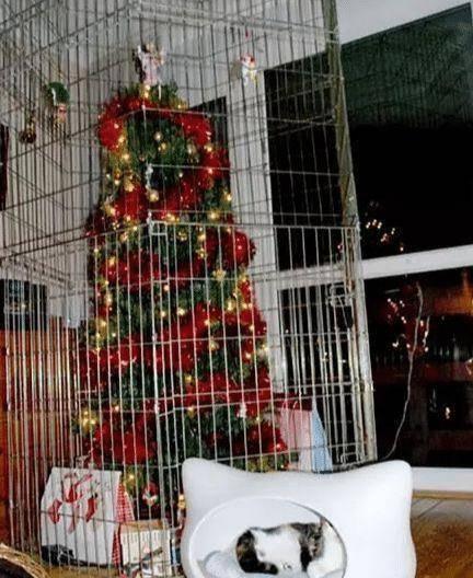 圣诞有颗树雪花图片_仿真圣诞树_仿真景观树