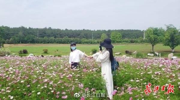 预约限流、巡回提醒,武汉景区疫情防控不放松