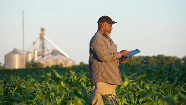 人工智能和区块链如何改进农业生产?