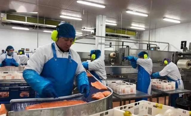 青岛天津等疫情均与冷链海鲜有关 国内第二波疫情开始了? 天津疫情最新通报了8月