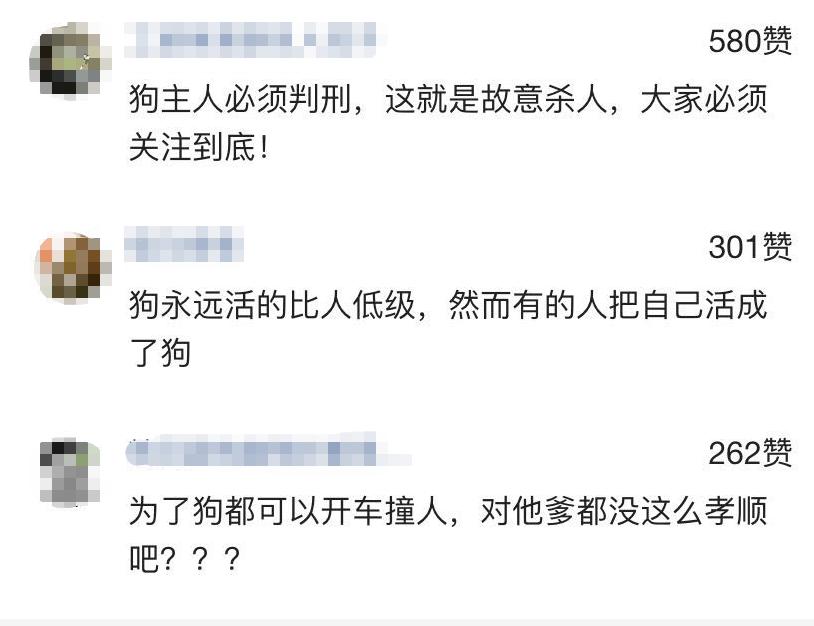 """""""哈尔滨一狗狗未栓绳被撞身亡,主人竟然开车凶狠撞向撞狗者!"""""""