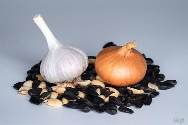 男性一般都比较关注自己的肾脏健康,那就多吃这些保护肾的食物!