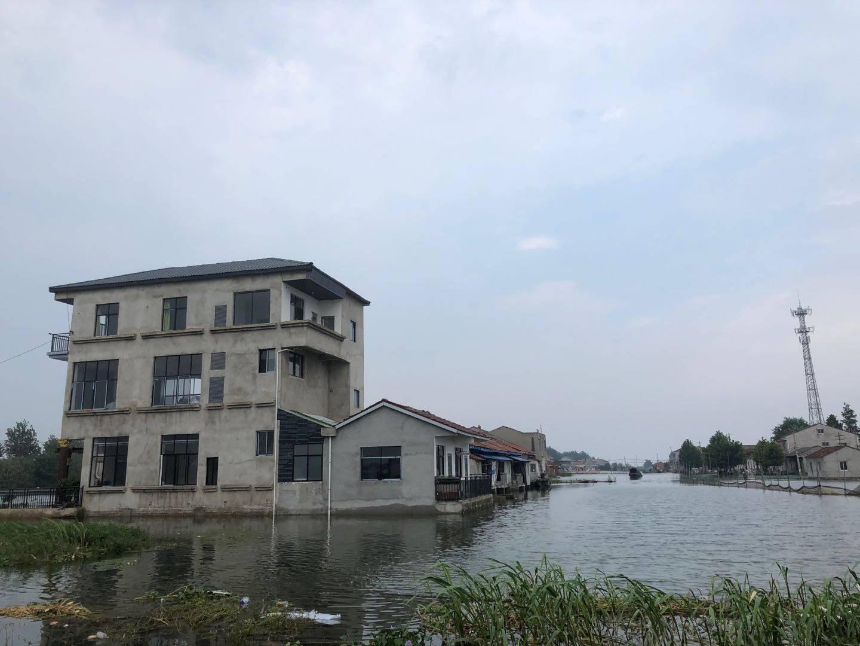 探访洪湖边被洪水围困的渔村:5700亩鱼塘被淹,划船出门