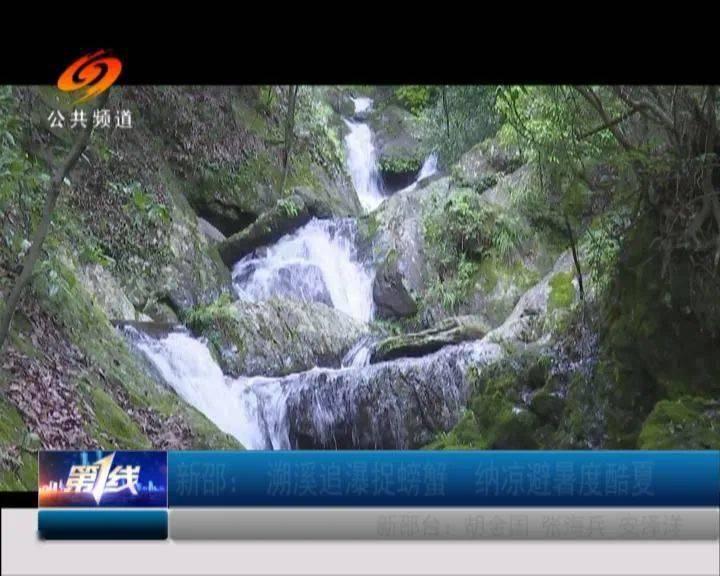 新少:跟着瀑布抓螃蟹享受清凉夏日 螃蟹