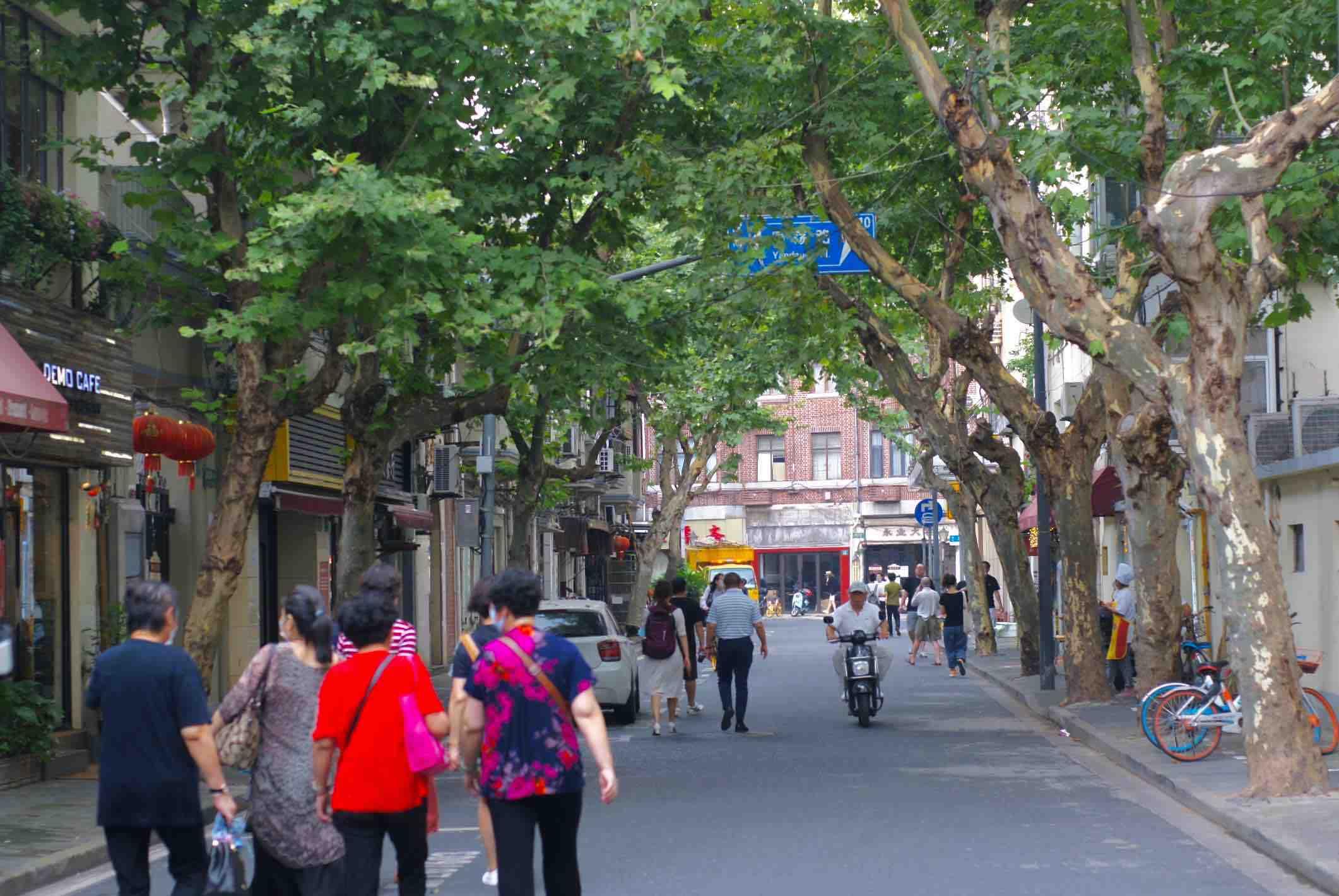上海小店故事|百年老房子里的和风洋食店