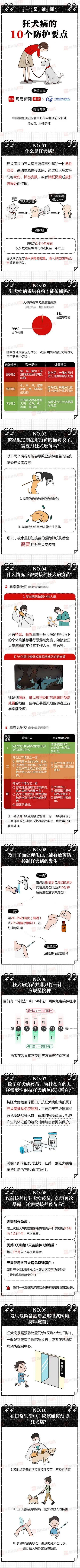 【科普】一图读懂狂犬病的10个防护要点