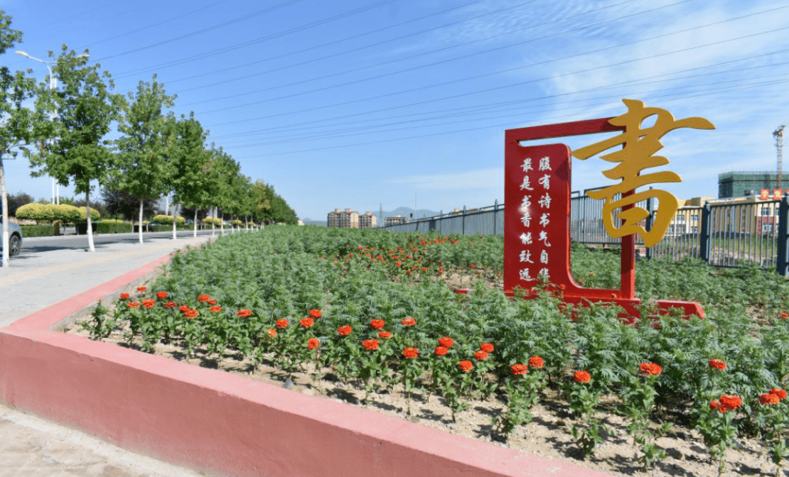 城区空闲地花卉种植,降低扬尘污染,美化城市环境