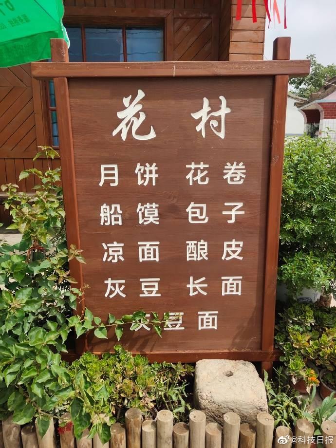 """花村·顾家善村:镶嵌在黄河岸边的""""江南水乡"""""""