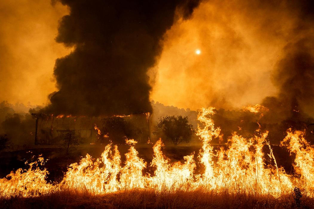 闪电劈树着火的原理_闪电劈树视频
