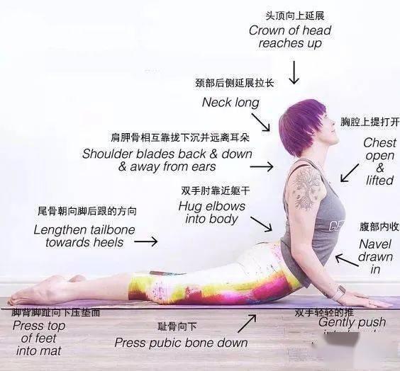 像蛇一样伸一伸腰, 女人的水蛇腰这样练 | 听瑜伽_体式