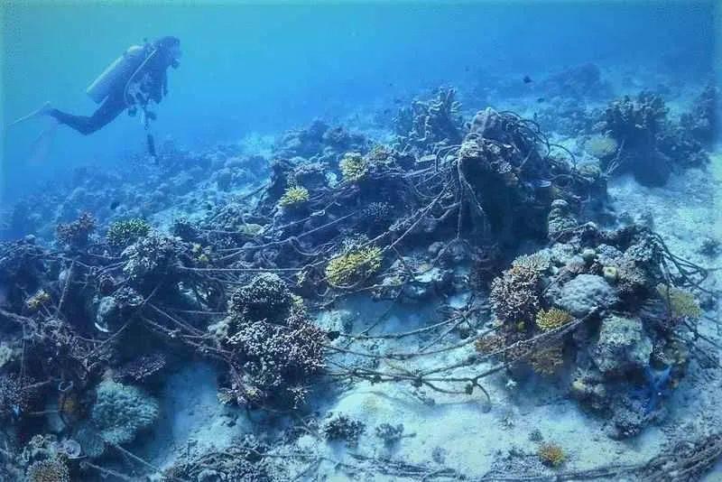沙巴潜水业终于恢复,潜水员们却担心自己被炸死