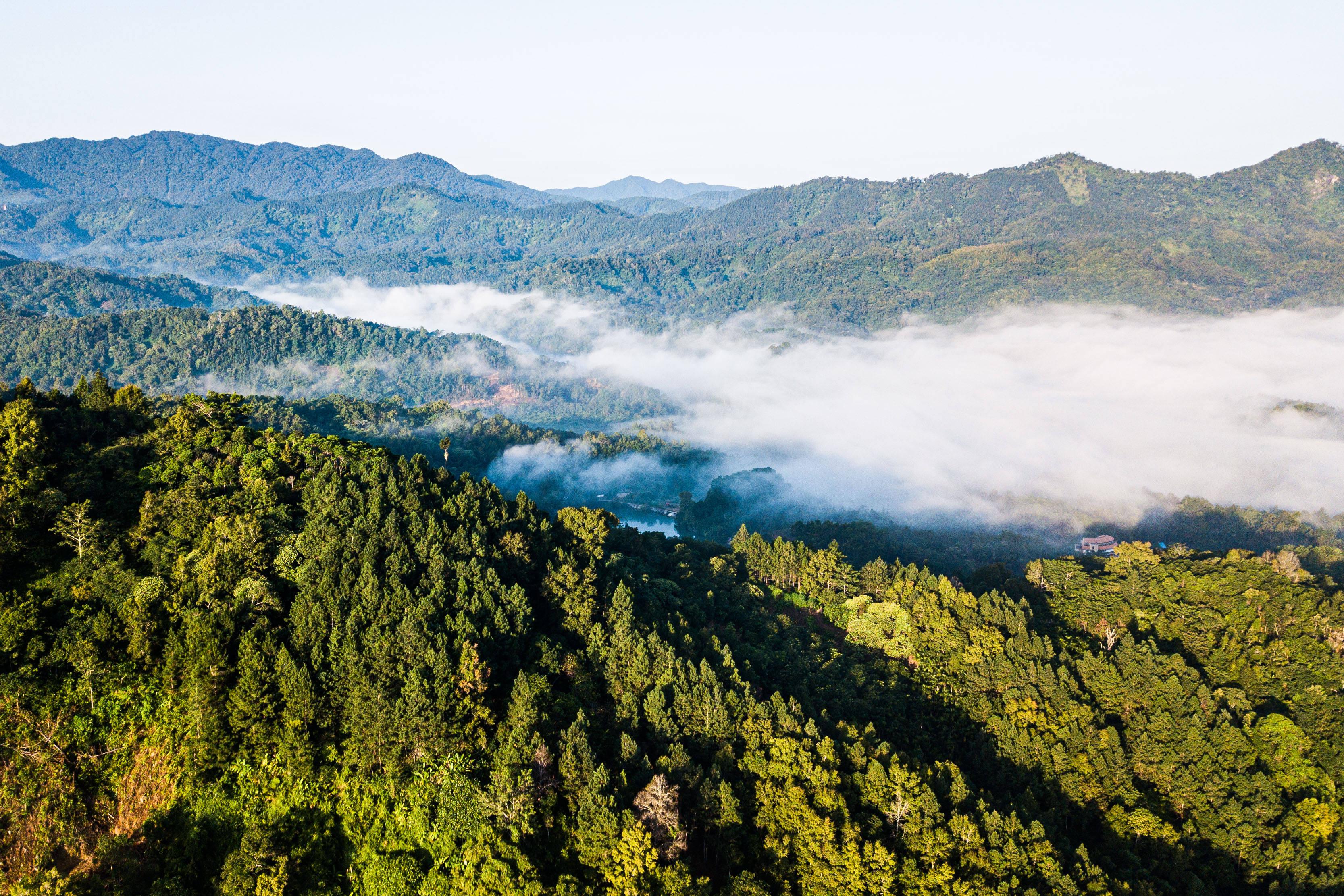<strong>参观海南热带雨林国家公园 探访热带浪漫</strong>
