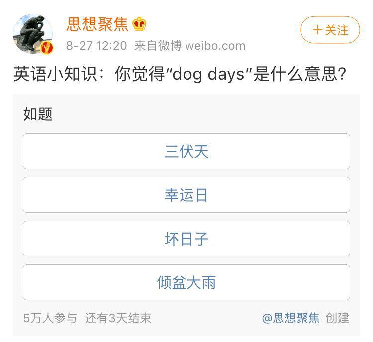 dog days 意思